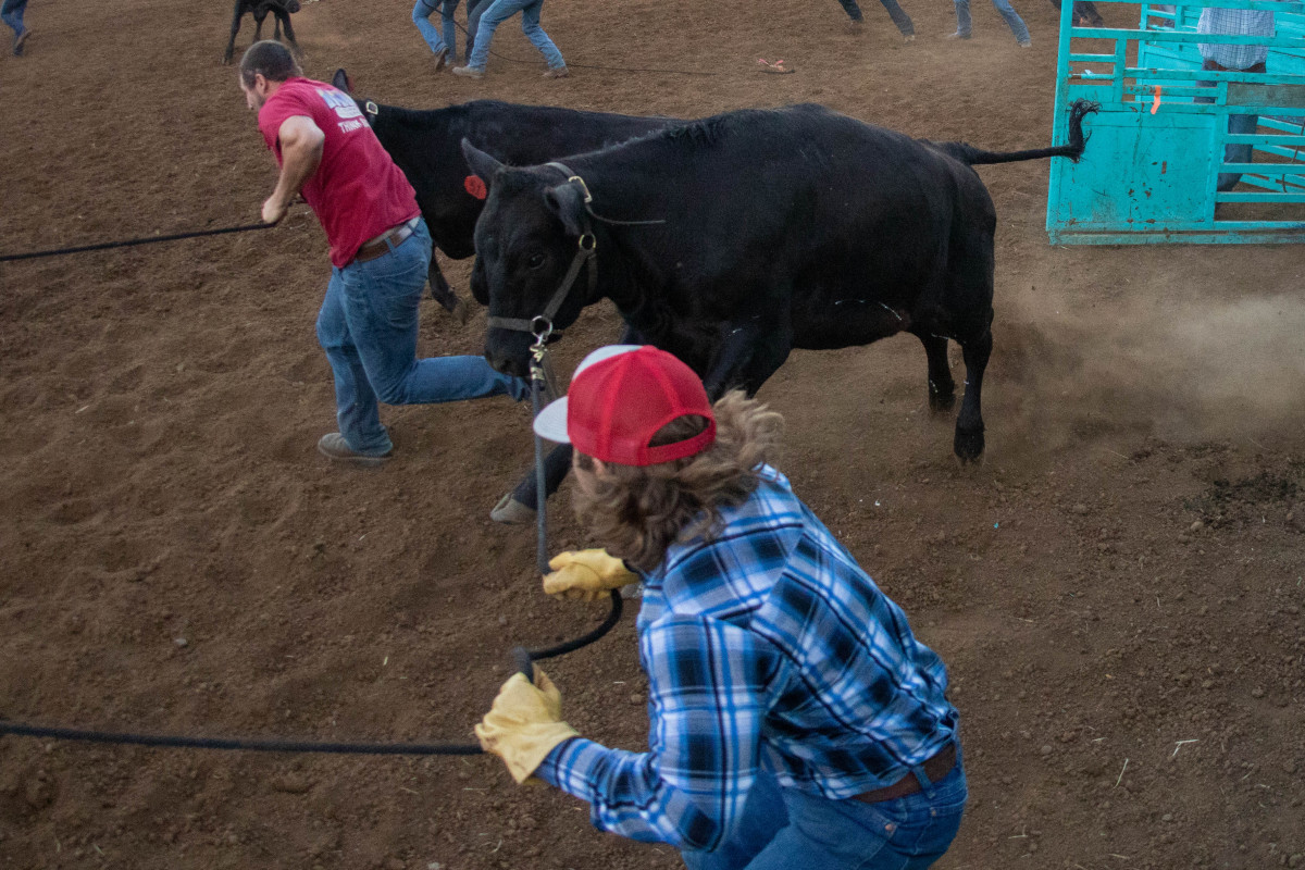 071021_frolic_day3_rodeo-48