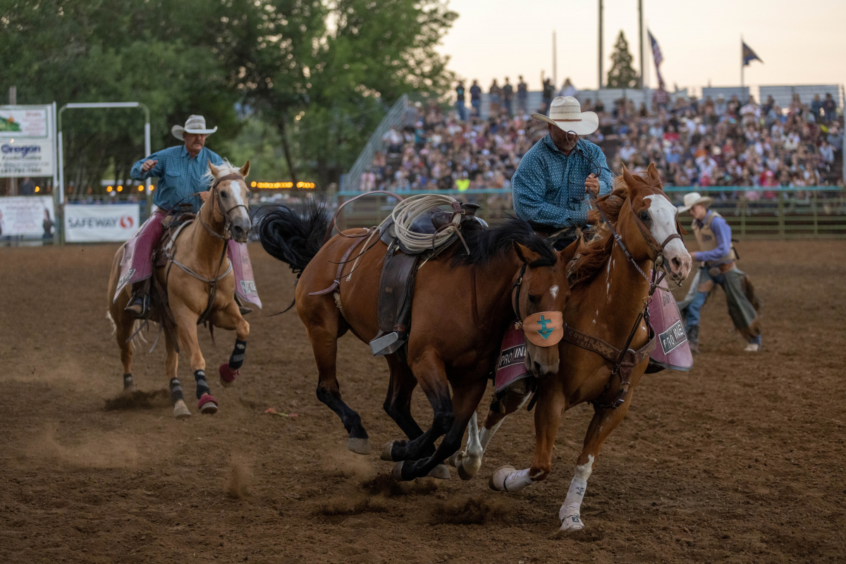 071021_frolic_day3_rodeo-69