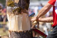 071021_frolic_day3_lumberjack-10