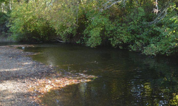 Marys River
