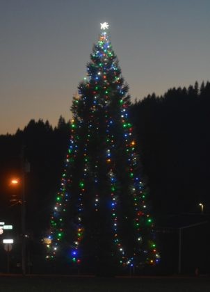 Philomath Community Christmas Tree