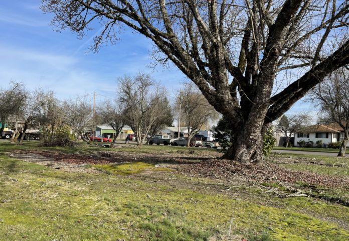 Site of Paul J. Cochran Veterans Memorial Park
