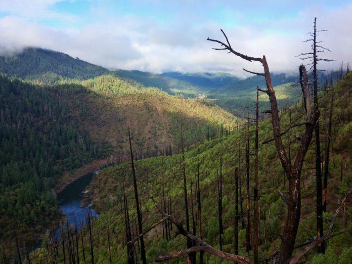 Klamath Mountains mosaic of fire effects