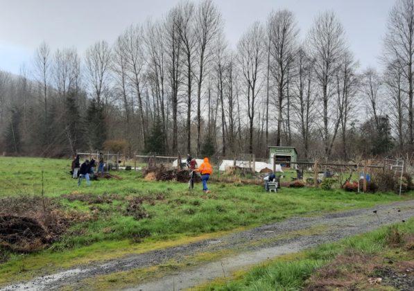 Lupe's Community Garden work
