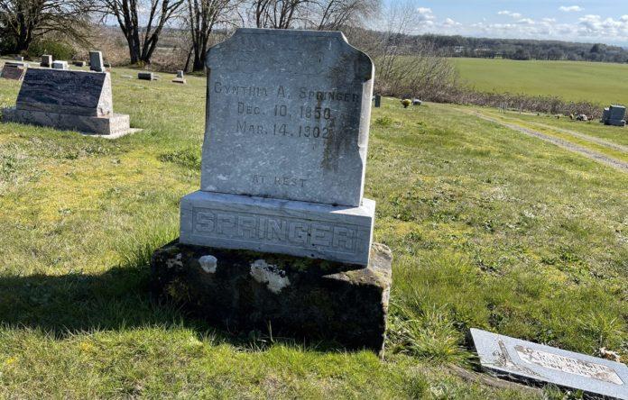 Cynthia Springer grave site