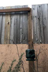 Noel Lundeen's bird feeders