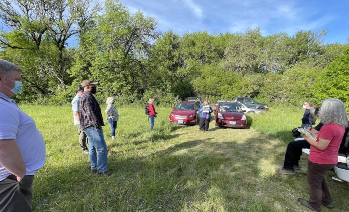 Lupine Meadows tour