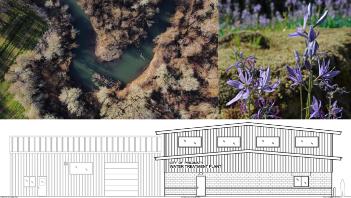 Artwork of Marys River, camas and drawing of new water plant