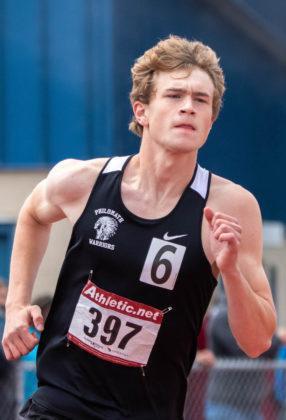 Levi Knutson